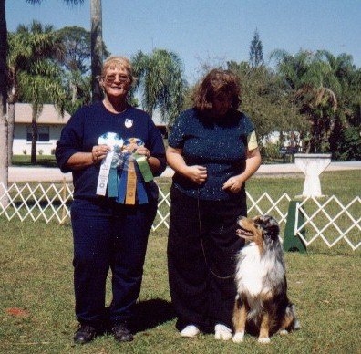 CAN CH. Ministick's St. Patrick's Day, CD, CGC, HIT Obedience award